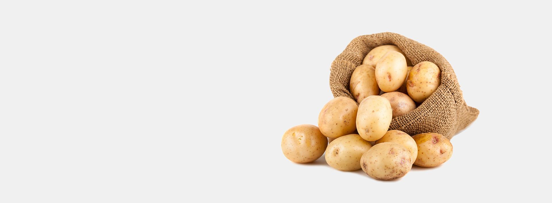 petalas-emporio-patata-header-2