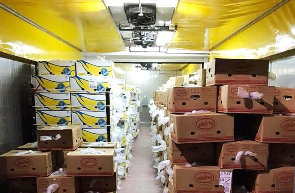 πεταλας εμποριο μπανανας